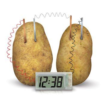 4M oroologio con patate